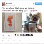 San Diego UX Designer Adrienne Alpern Wins the iPhone 6S Lottery!