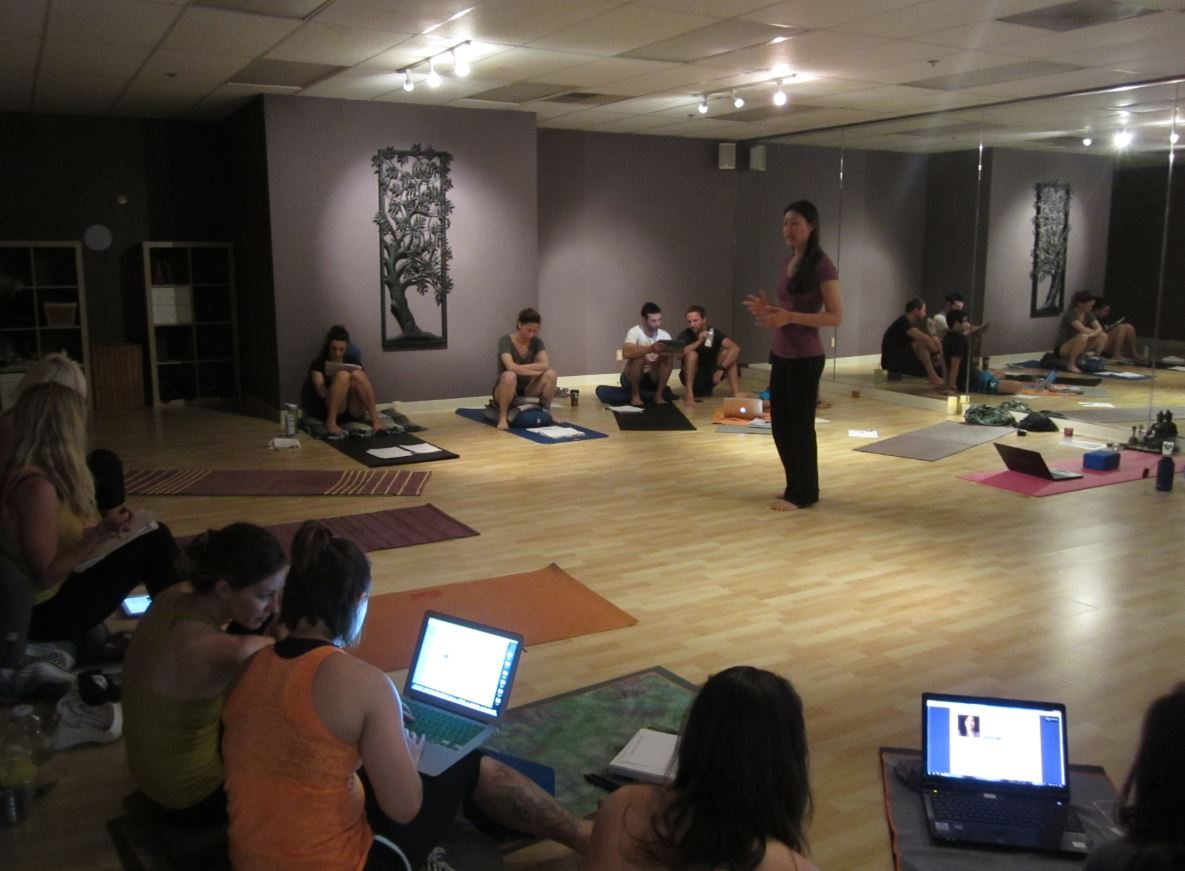 Digital Media Now Yogis Bird Rock
